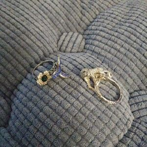 Leopard and bird rings